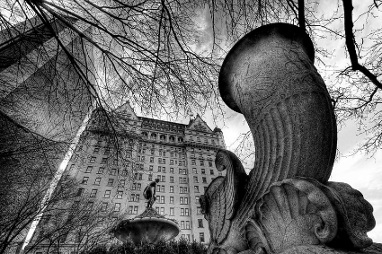 As the buyer of the prestigious Plaza hotel in New York, Shahal Khan becomes a public figure.